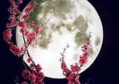 full moon virgo 2017